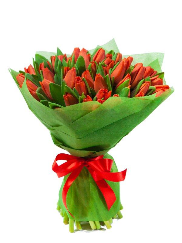 Букет из зеленых тюльпанов